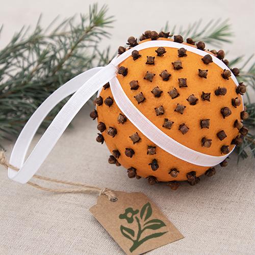 Clove-and-Orange-holiday-ball_895Sara_500x500-copy-1