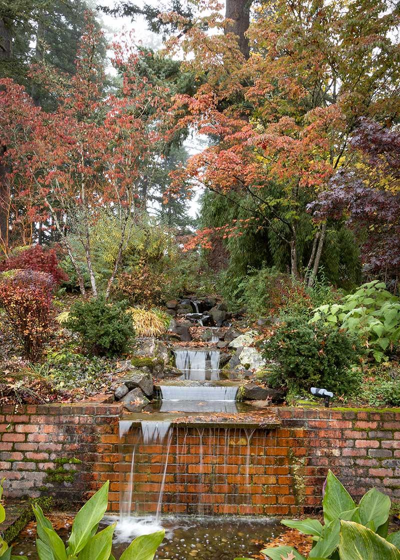 Dietrick-fall-garden_2038M-1_800%20%28copy%29