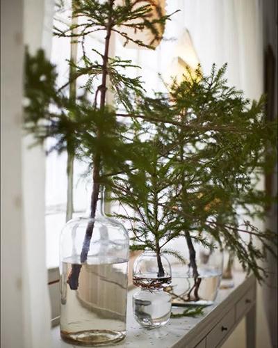 branchesinvases400x500