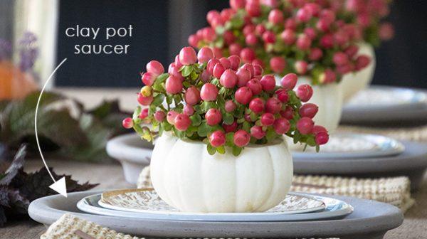 closeupberries600x335_edited-300x168@2x