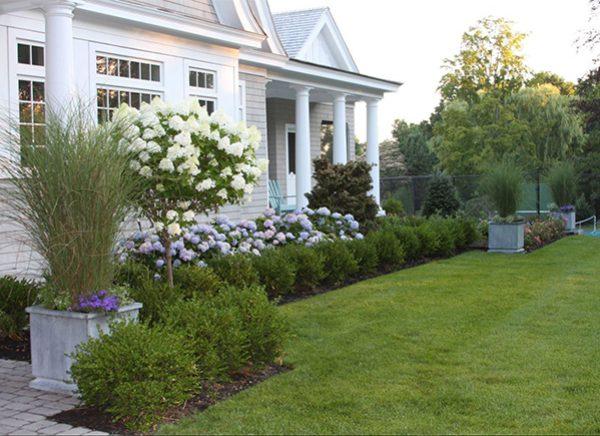A foundation garden that has begun to bloom
