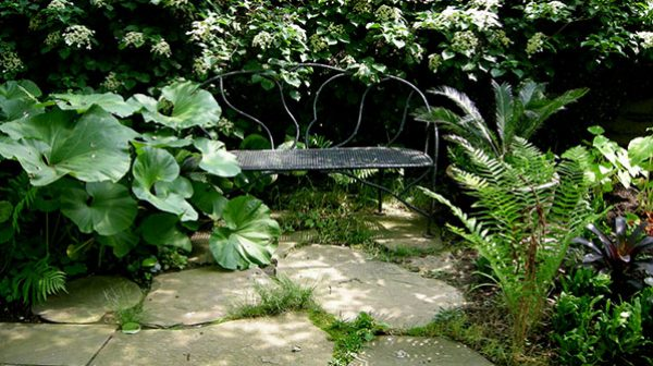 A seat within the garden