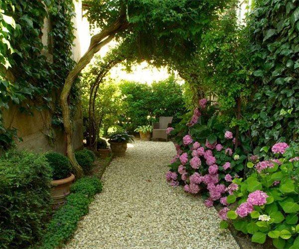 Over hang in the garden