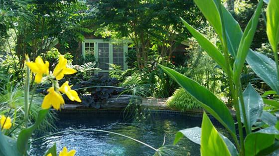 Northeast Garden