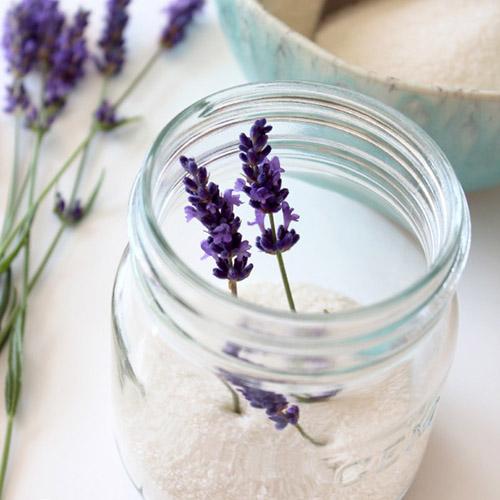 lavendersugarcropped
