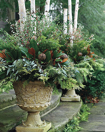 Winter Container Ideas For Cold Zones Grow Beautifully