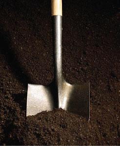 Soil Condition